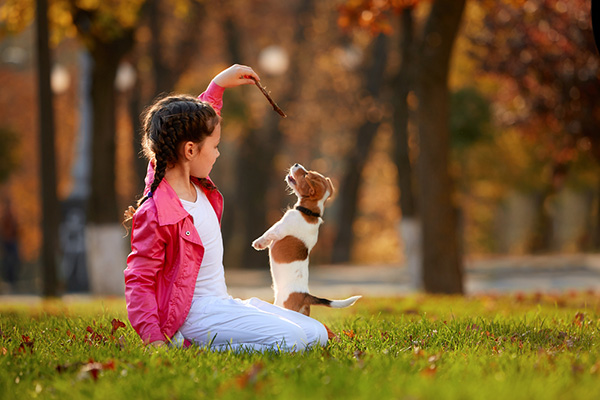 Girl_and_Dog_5@2x.jpg