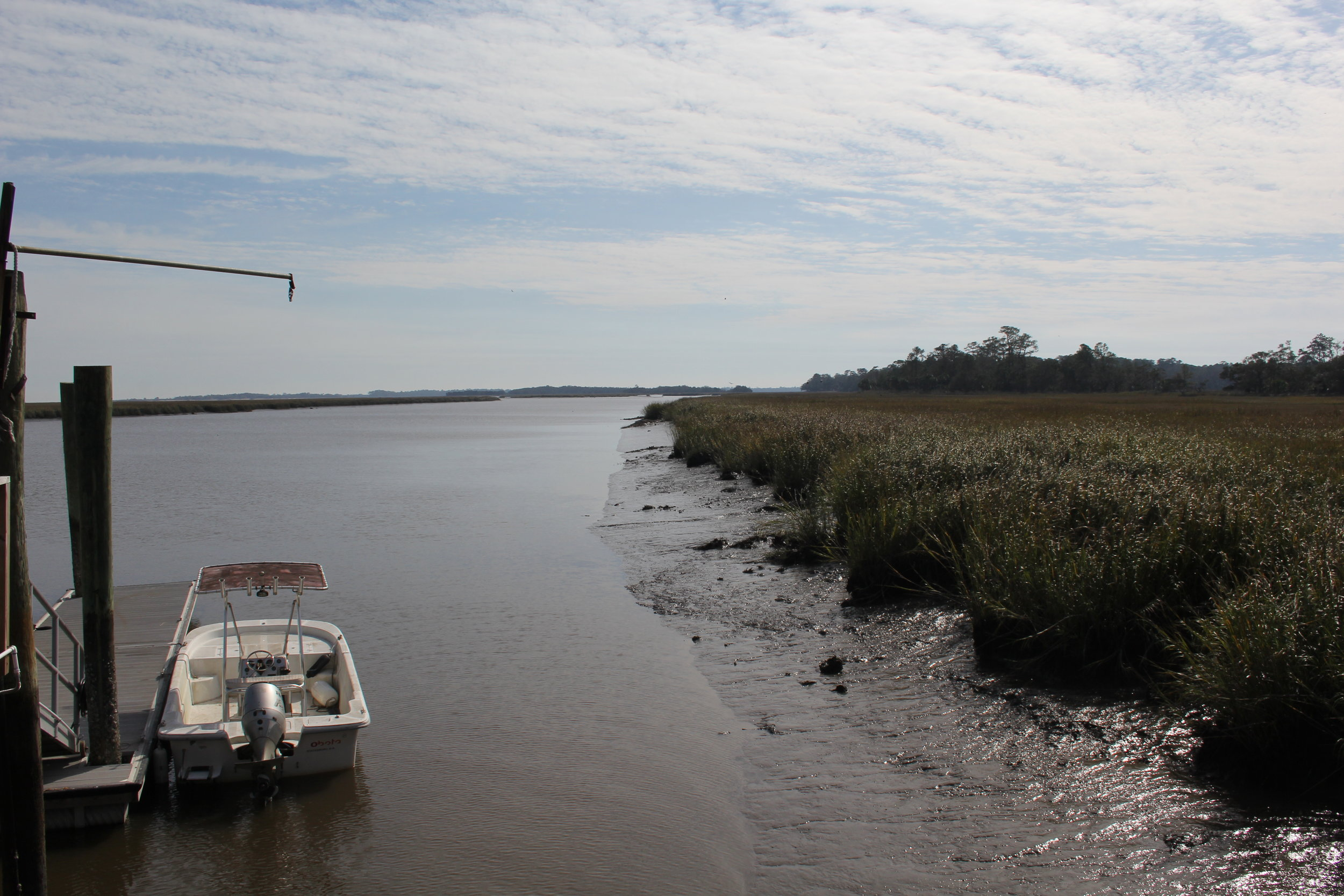 The protected, marshy coast of Ossabaw Island, Georgia, served as an example for the effects of rising sea levels.