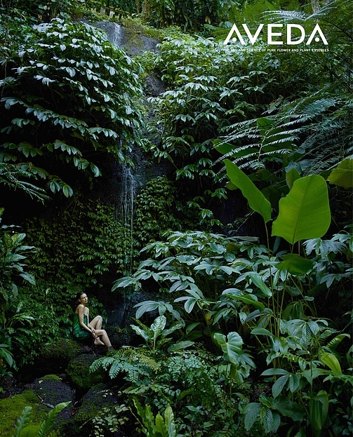 Aveda Environment impact - SEE AND FEEL THE AVEDA DIFFERENCE AN ENVIRONMENT WHERE BEAUTY AND WELLNESS CONVERGE