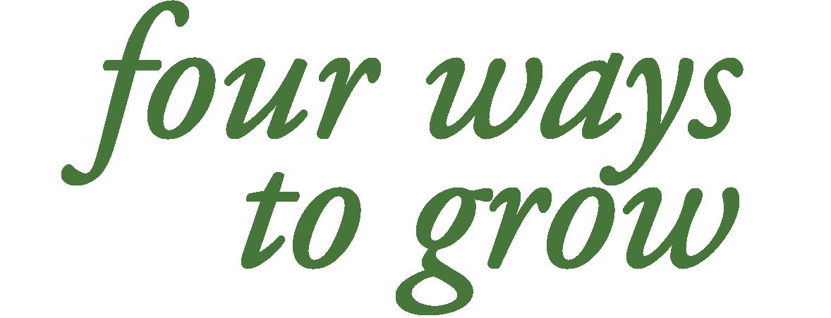 four ways to grow-01.png