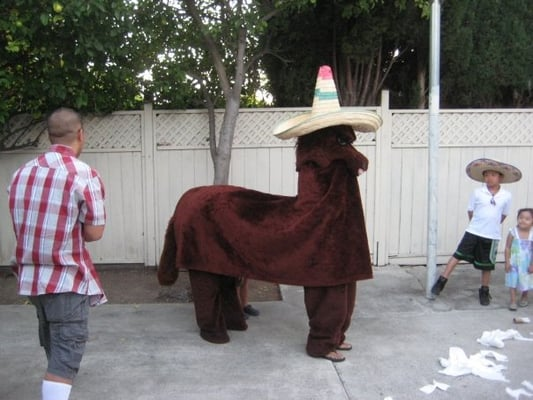 Cozart's donkey is a fraud. I don't believe he exists.