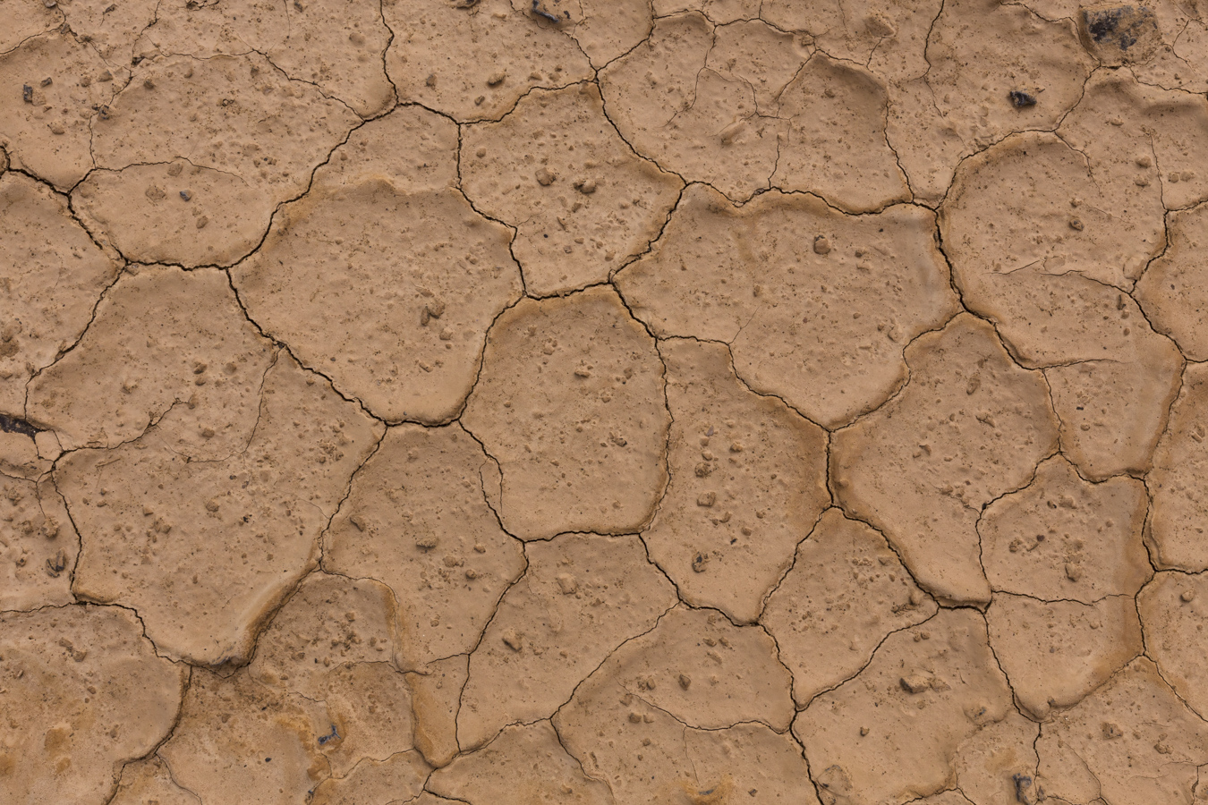 Very dry riverbed