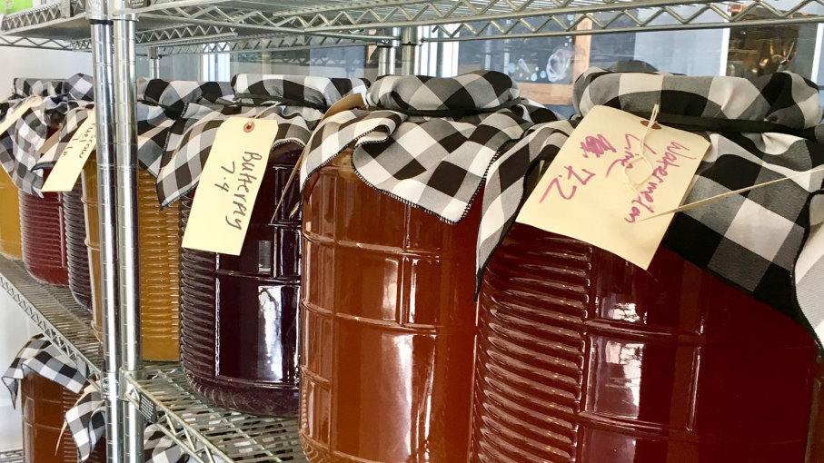Jars of kombucha are left to ferment on shelves on a metal rack. Homemade kombucha has become a popular alternative to the expensive store-bought kind. PAM SUSEMIEHL/GETTY IMAGES