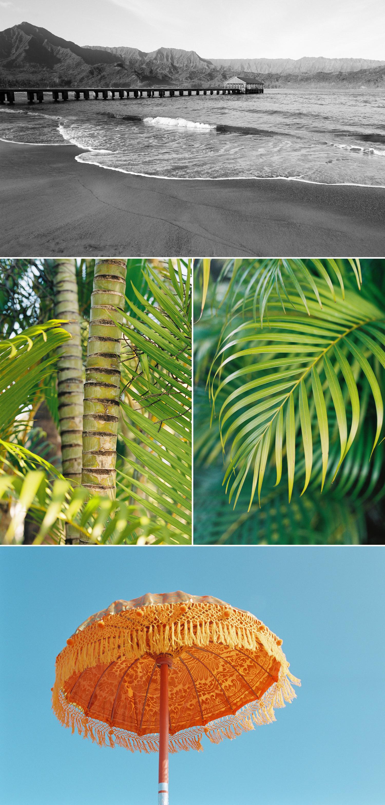 cameron-zegers-photography-travel-hawaii-kauai-20.jpg