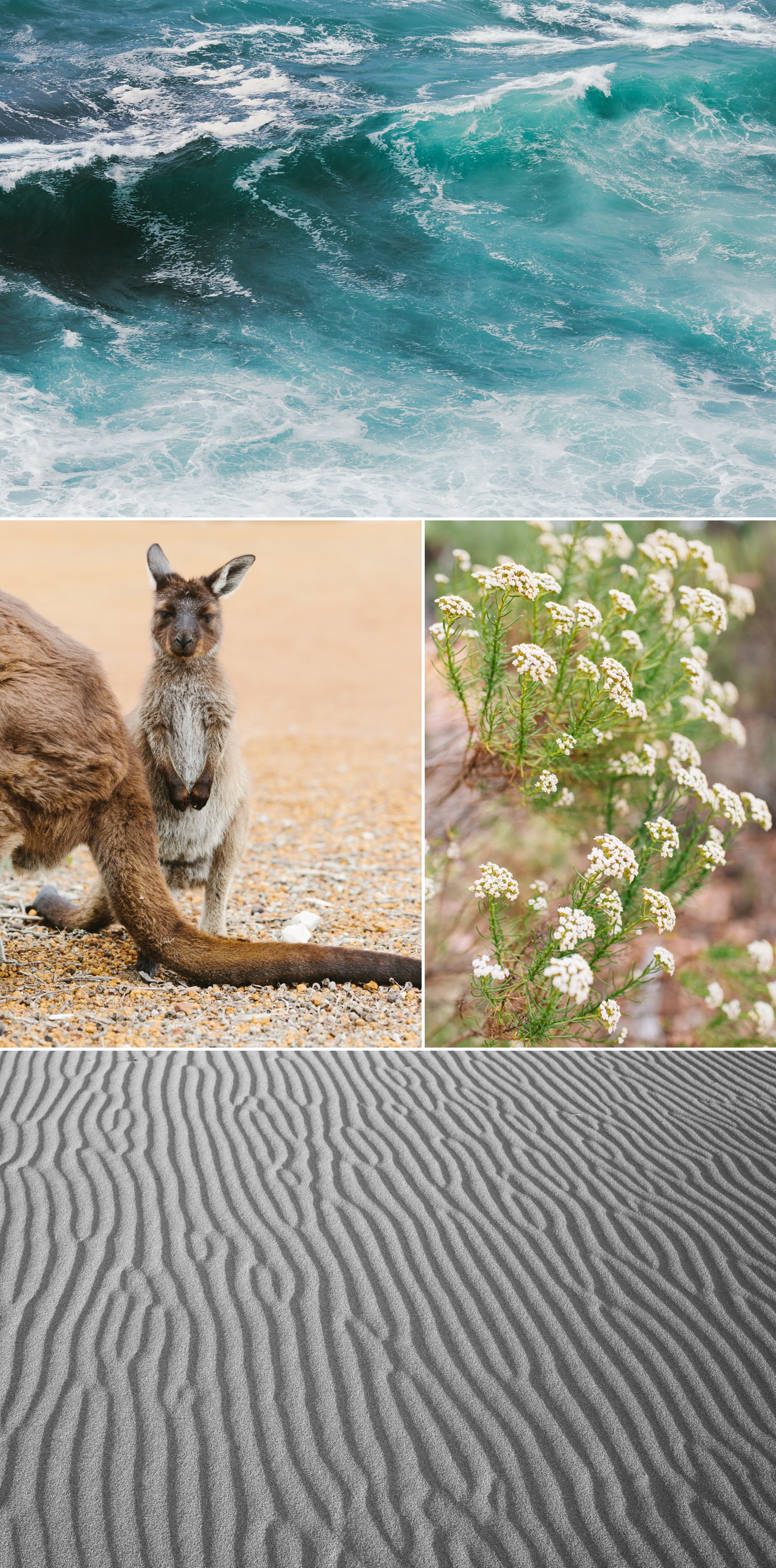 cameron-zegers-seattle-photographer-kangaroo-island-australia-travel_0011.jpg