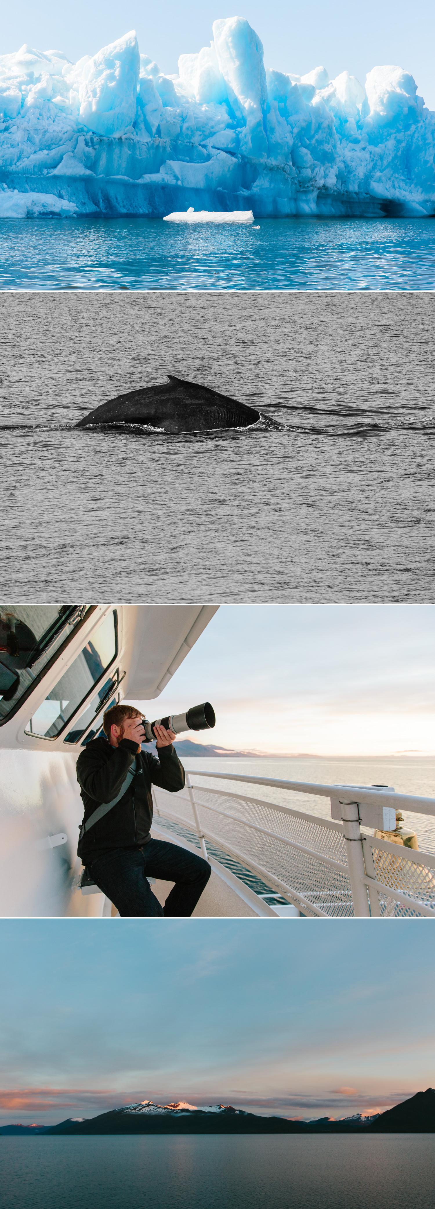 cameron-zegers-photography-alaska-uncruise-travel-4.jpg
