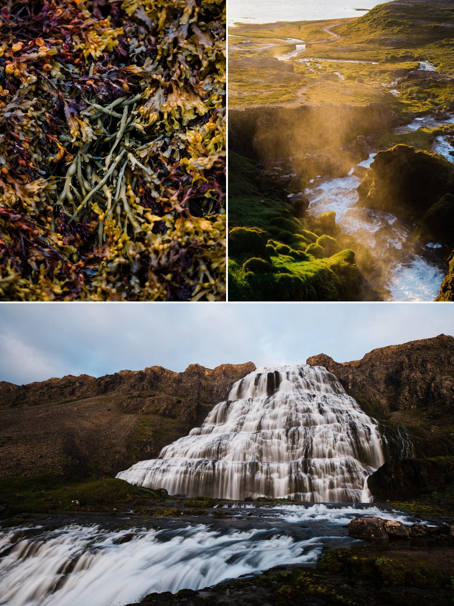 15-westfjords-iceland-dyjandi.jpg