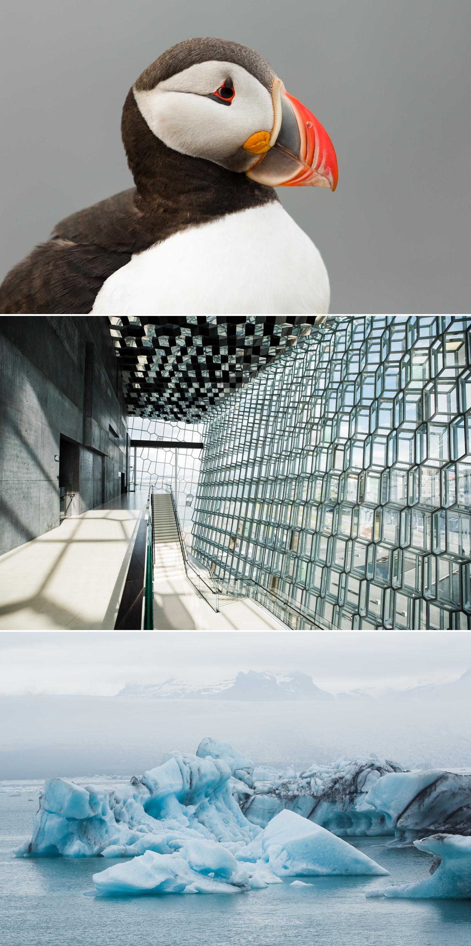 23-photography-workshop-iceland.jpg