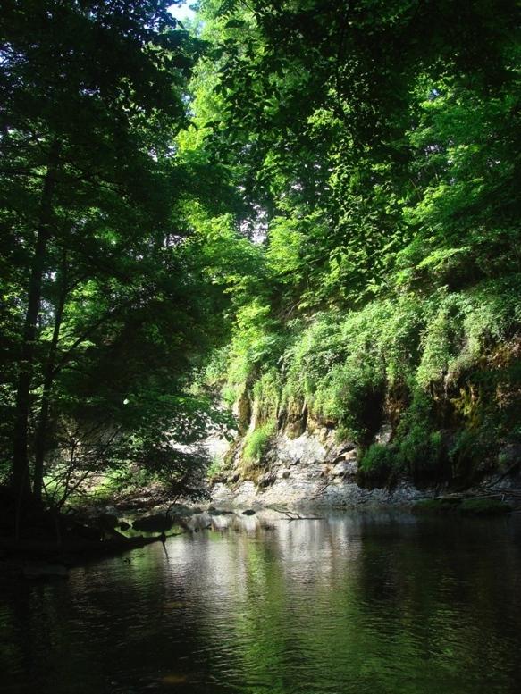 SugarCreek Cliff at Yountsville Mill~Inn & Garden-BnB.jpg
