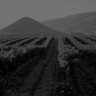 Long Range Economic Growth Forecast San Luis Obispo County -