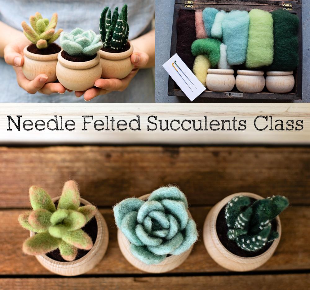 succulent class.jpg