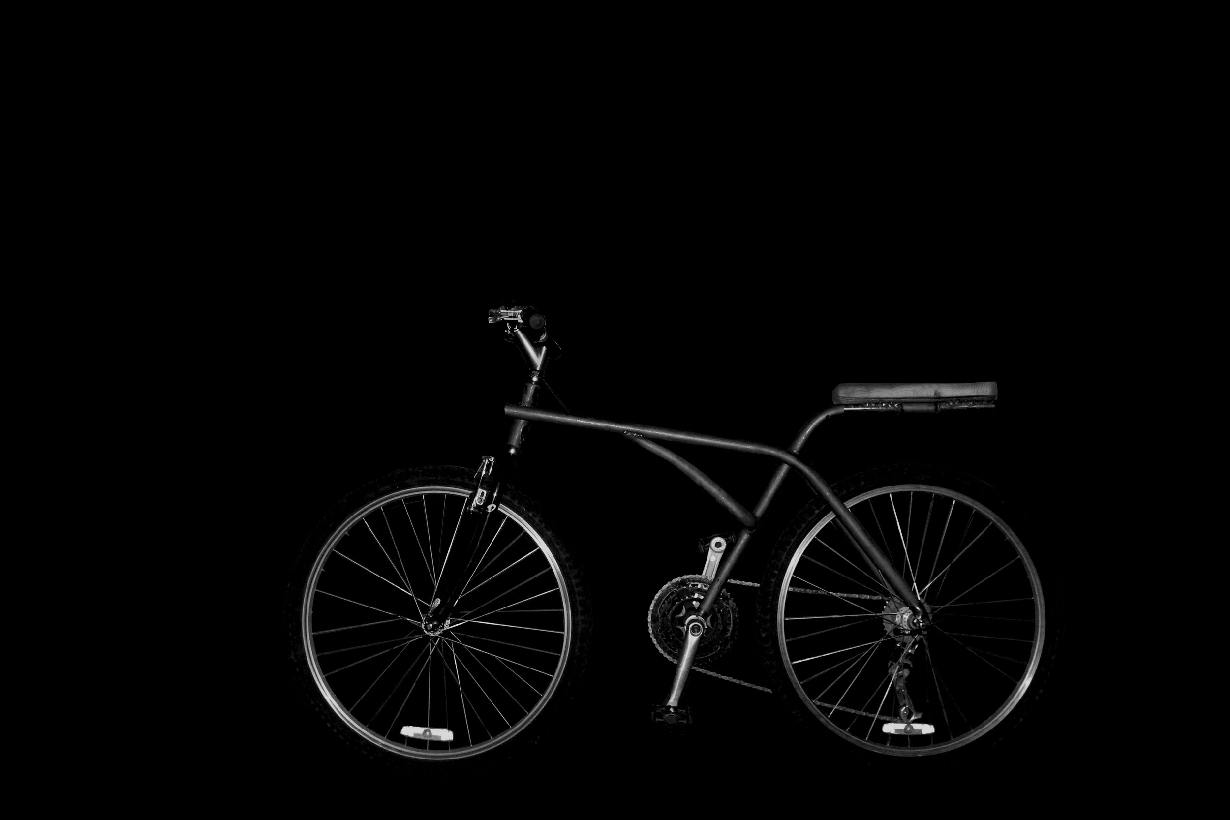 bike black portrait.jpg