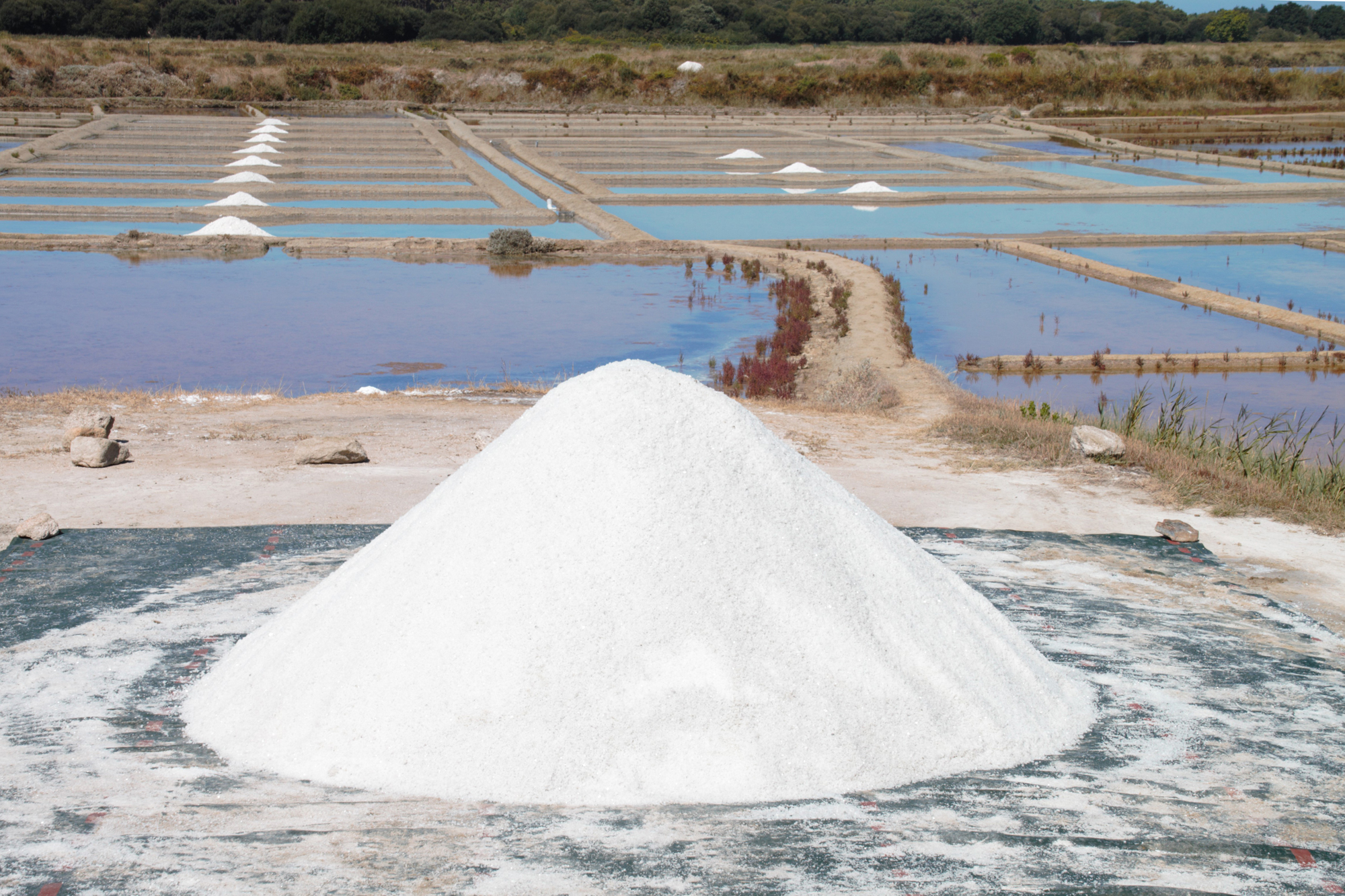 Guerande, France, where Europe's most prized sea salt is made by hand.  Marais salants - salt marshes  by Jeanne Menjoulet /  CC BY