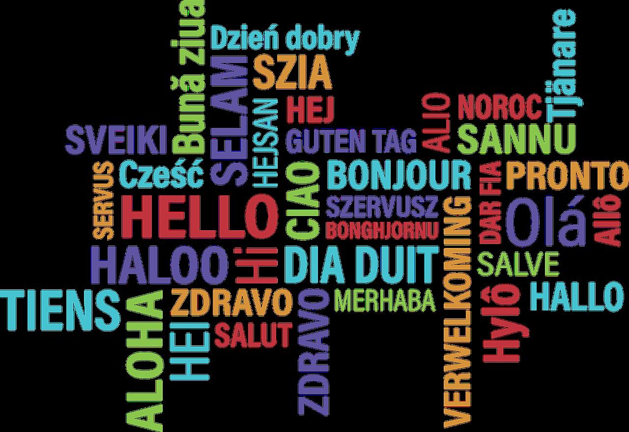 新潟通訳翻訳協会 NAT とは - 新潟で活躍する通訳者・翻訳者、または今後通訳者・翻訳者として活躍したい方たちによる任意団体です。新潟の国際化を担う人材を育成し、新潟県内を中心とした企業との懸け橋となるべく取り組みを行い、活躍の場を広げるための活動をしていきます。詳しく読む