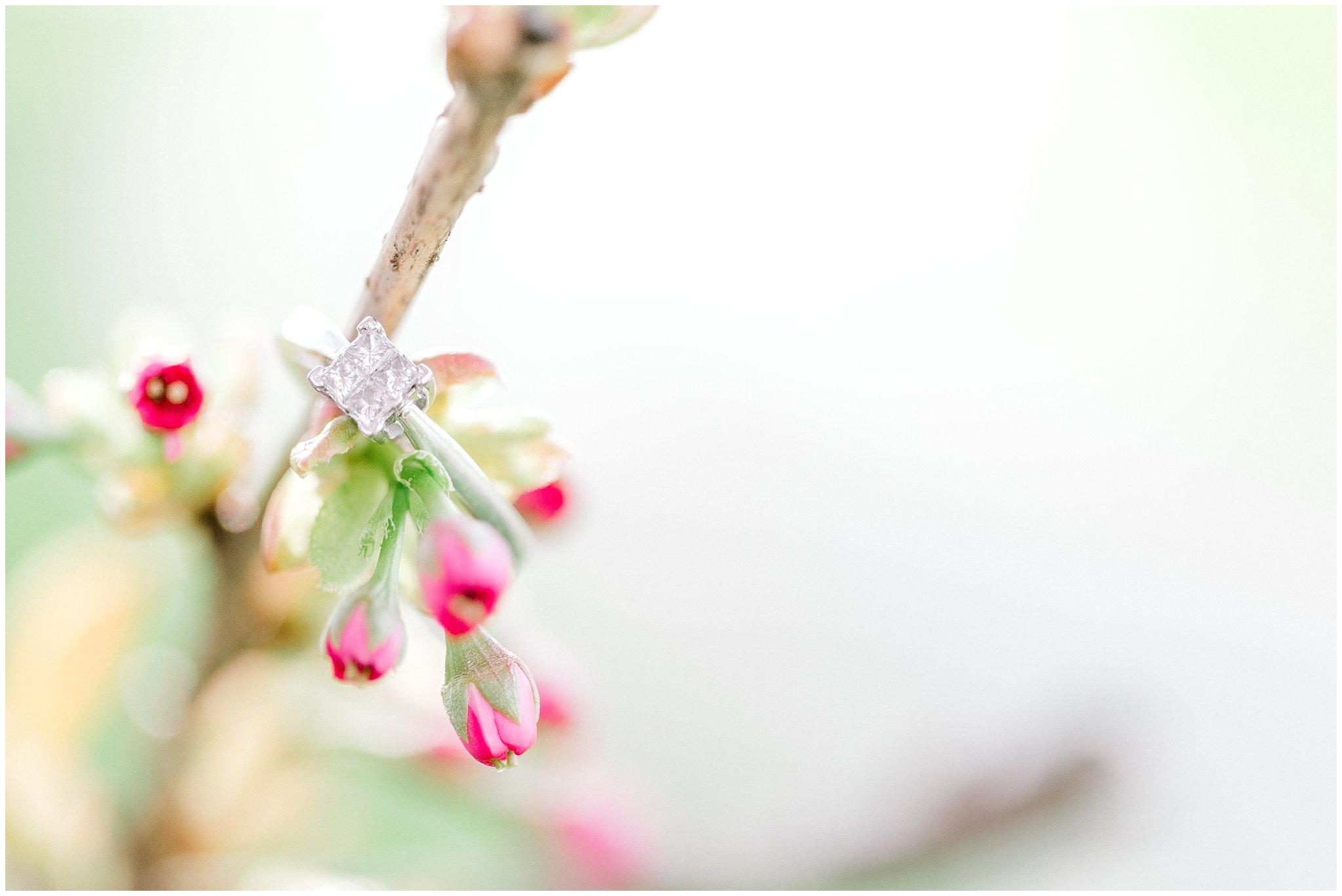 Lehigh Valley Spring Cherry Blossom Engagement Session Pennsylvania Wedding Photographer (14).jpg