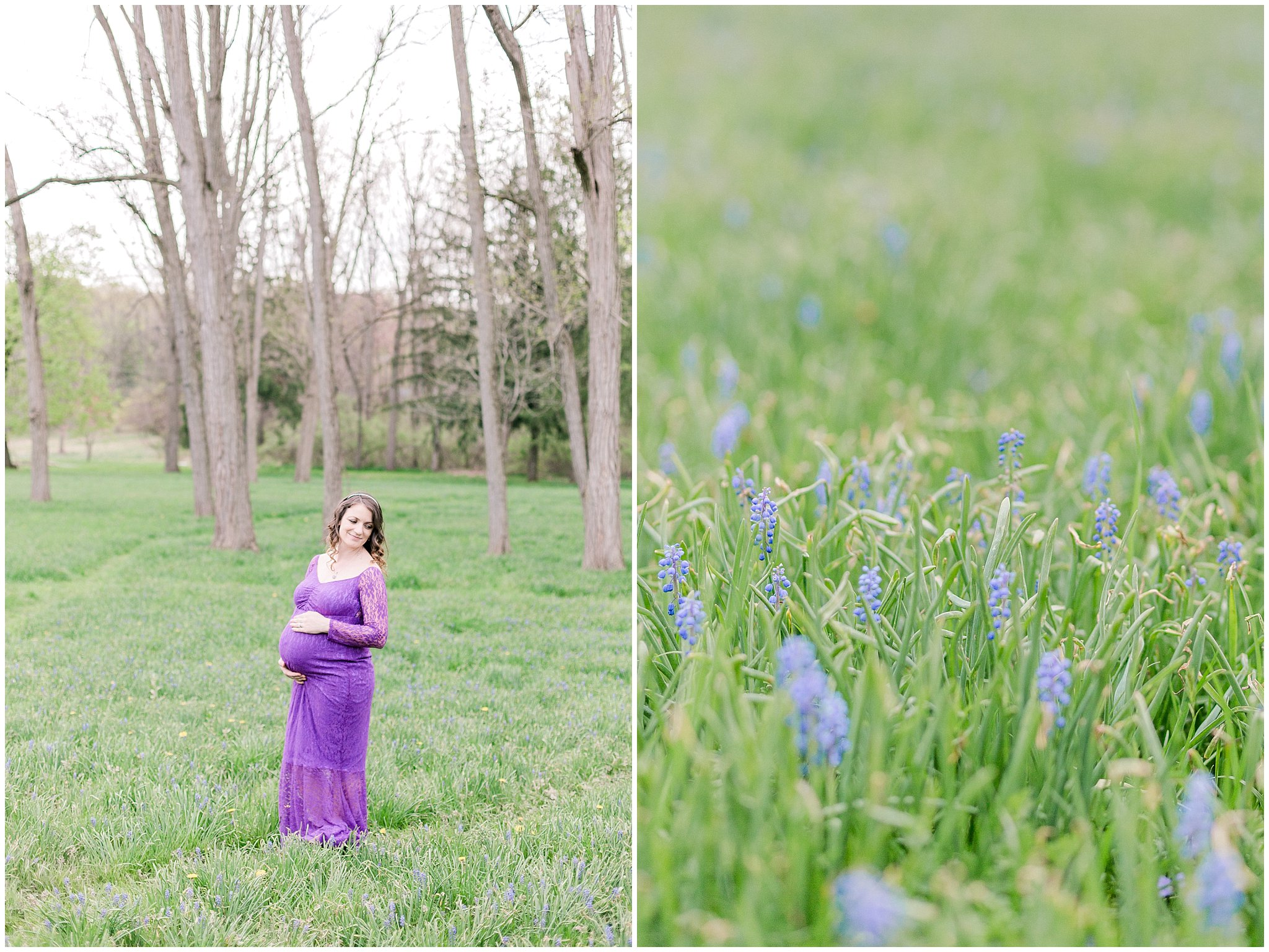 alburtis lockridge blue bonnet purple inspried maternity and family session pennsylvania wedding and lifestyle photographer (11).jpg