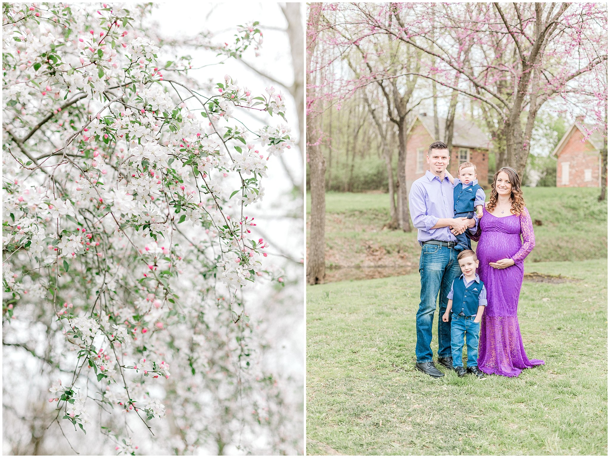 alburtis lockridge blue bonnet purple inspried maternity and family session pennsylvania wedding and lifestyle photographer.jpg