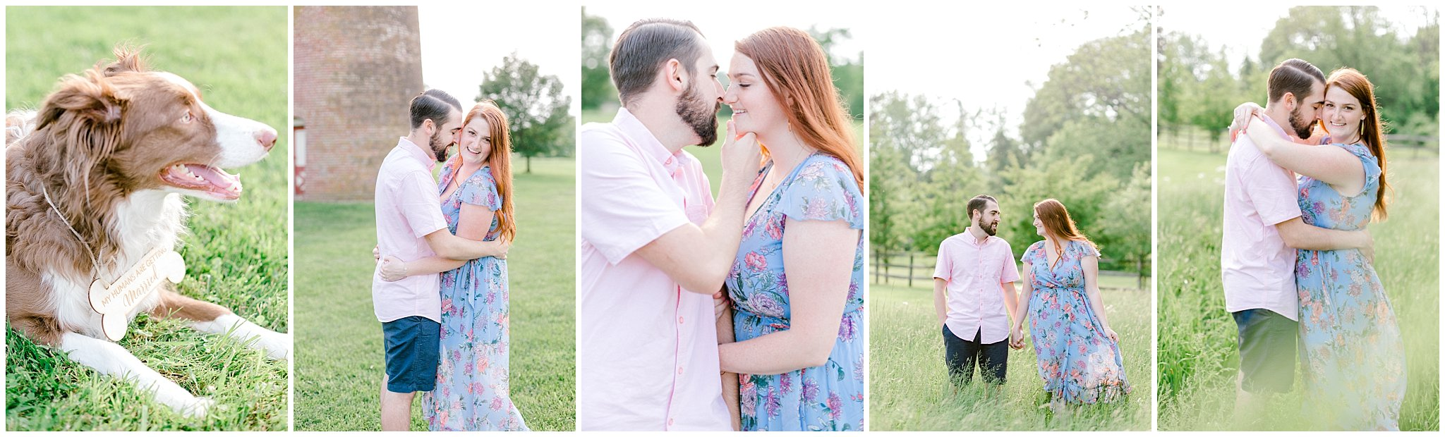 Manor house at prophecy Creek Blue Bell PA wedding venue summertime field engagement session lehigh valley based wedding and lifestyle photographe_0024.jpg