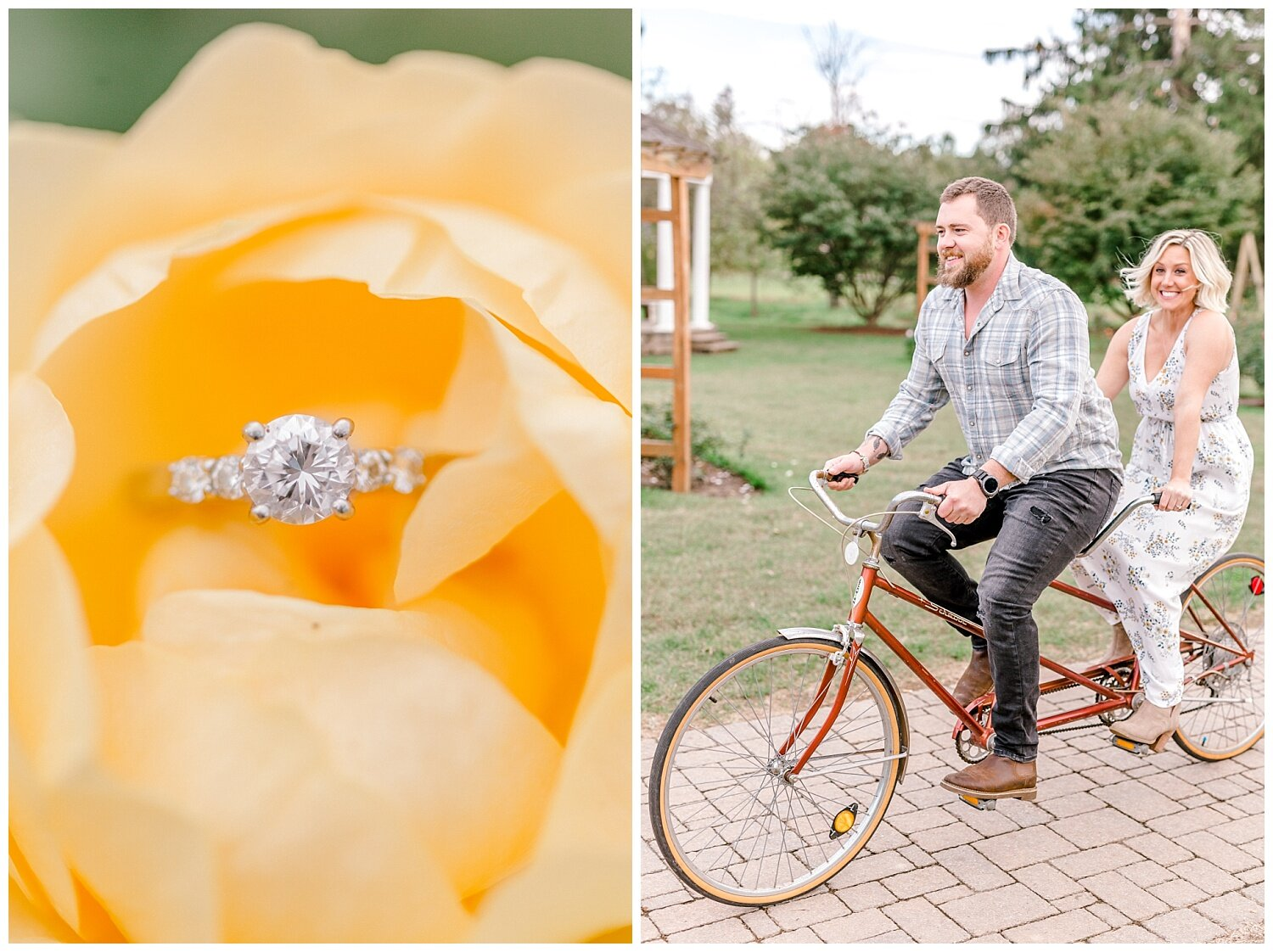 Allentown rose garden sunset engagement session with a tandem bike by lehigh valley pennsylvania based wedding and lifestyle photographer Jeannie Lytle of Lytle Photography Company_0006.jpg