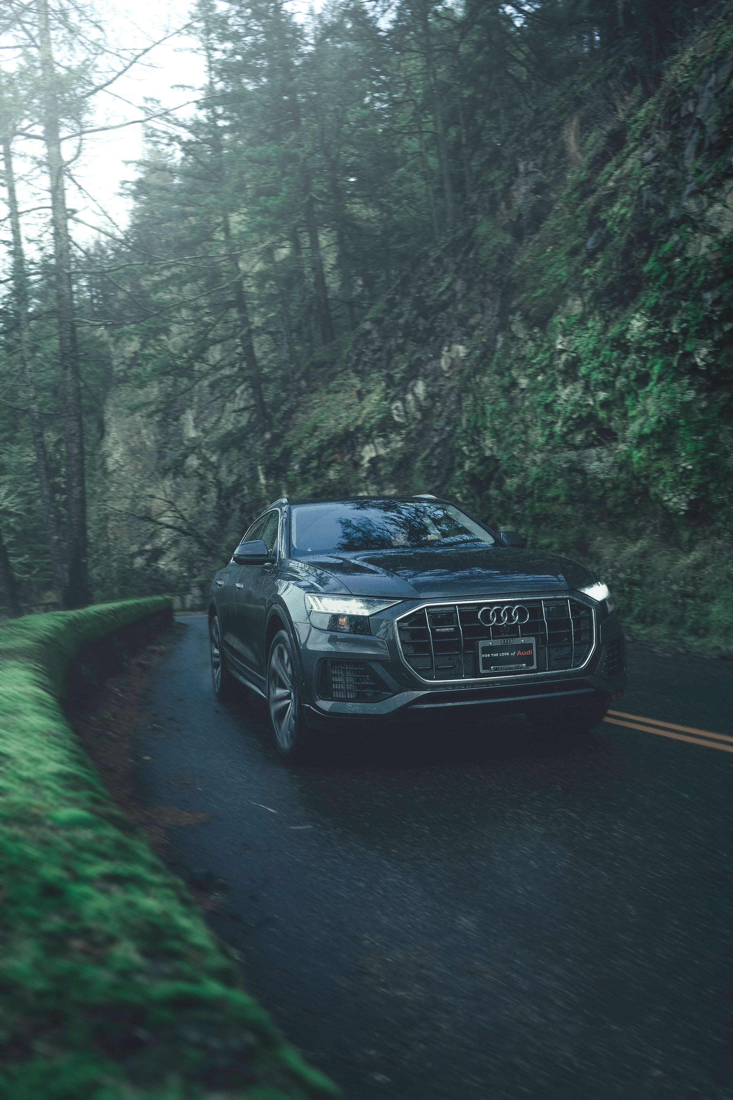 Audi_Q8.jpg