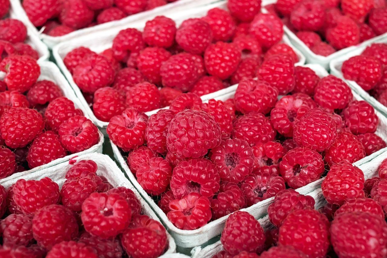 raspberry-1465988_1280.jpg