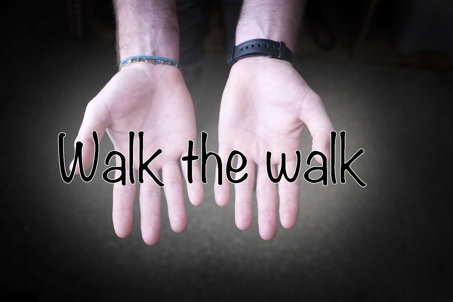 category 8- walk the walk.jpg