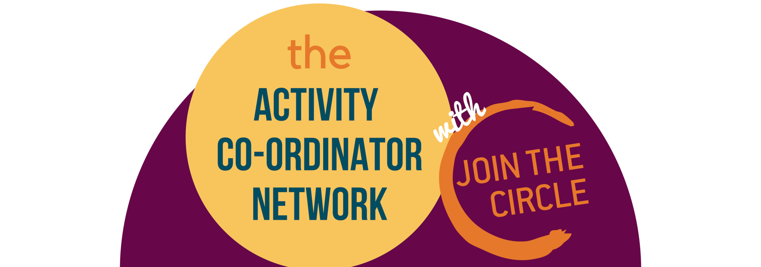 activity co-ordinator network.png