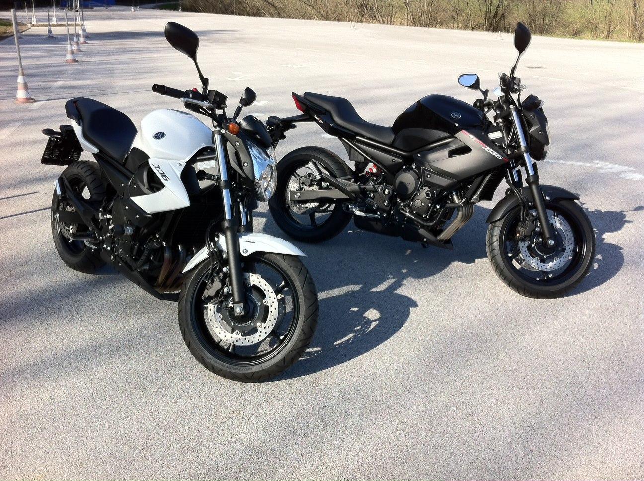 Unsere Motorräder für die Klasse A2 und A