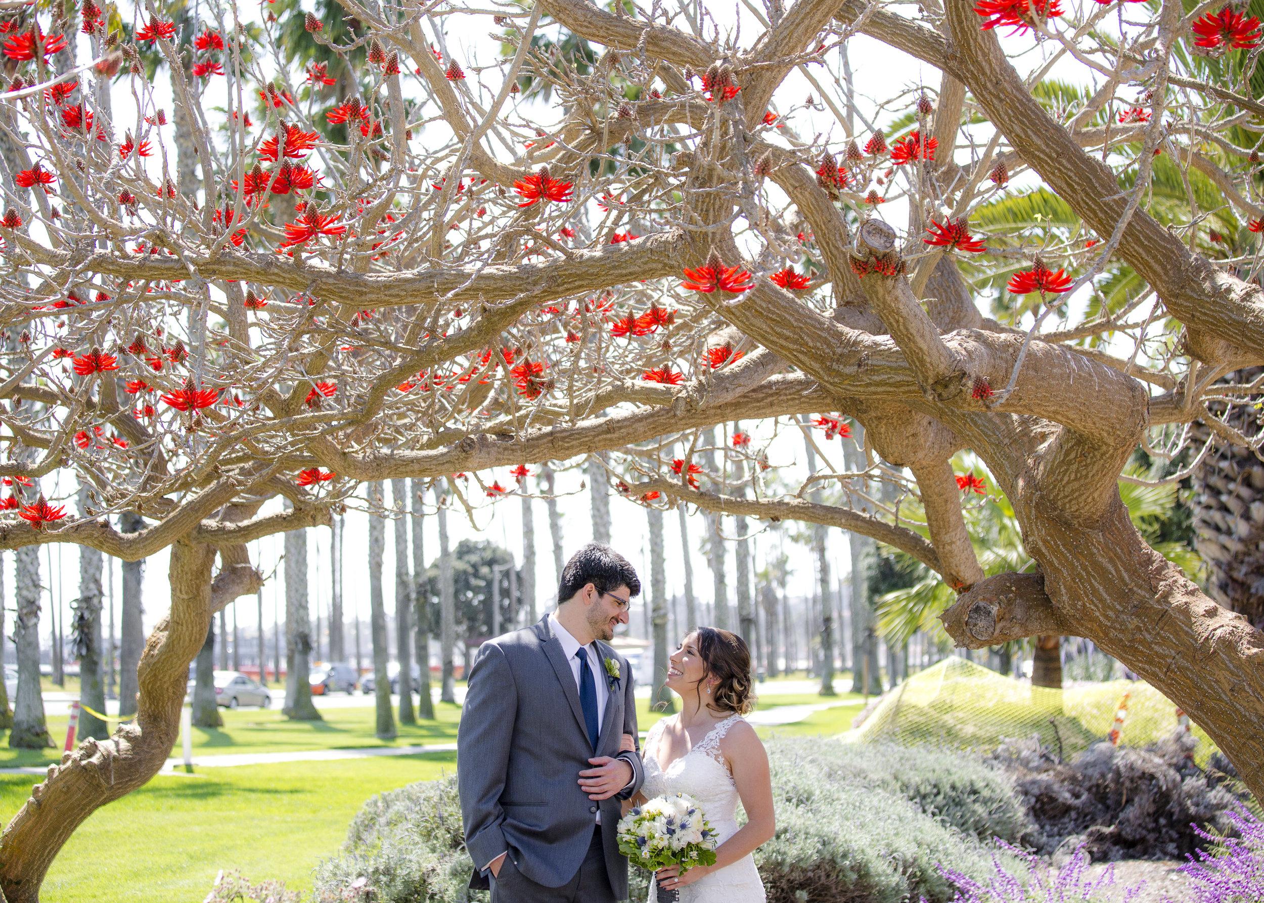 Wedding in Santa Barbara Ca