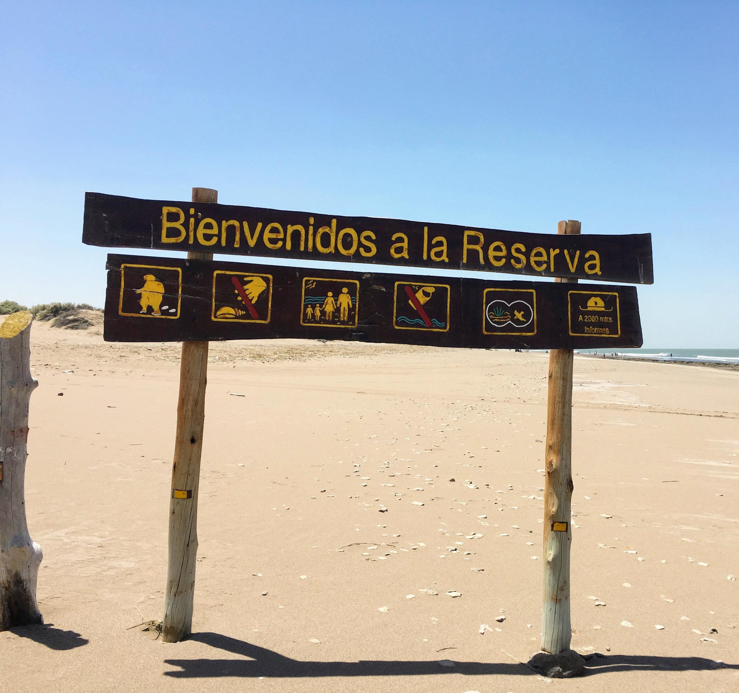 pehuen co costa argentina sol.jpg