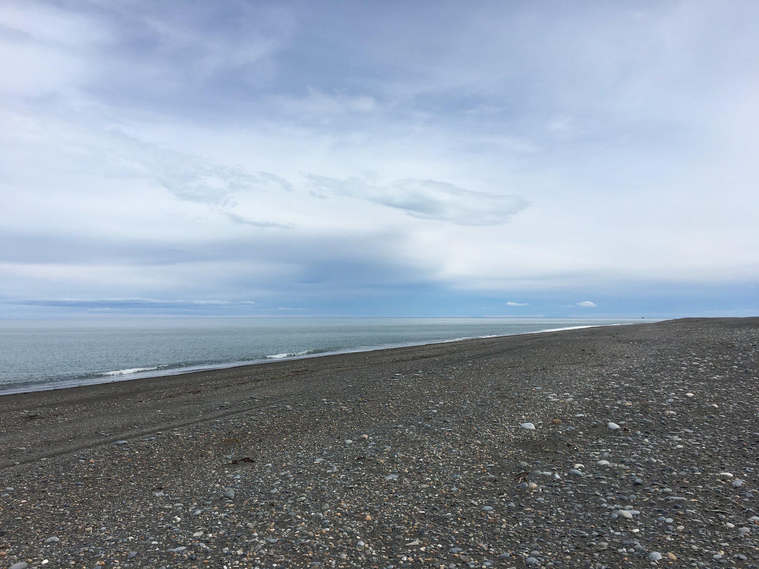 beach patagonia.jpg