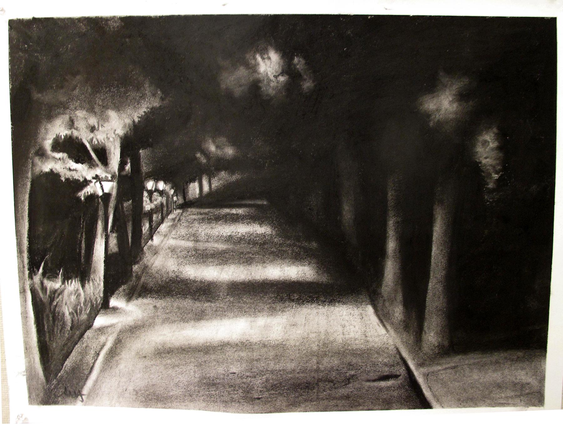 Andrea-nightime landscape.jpg