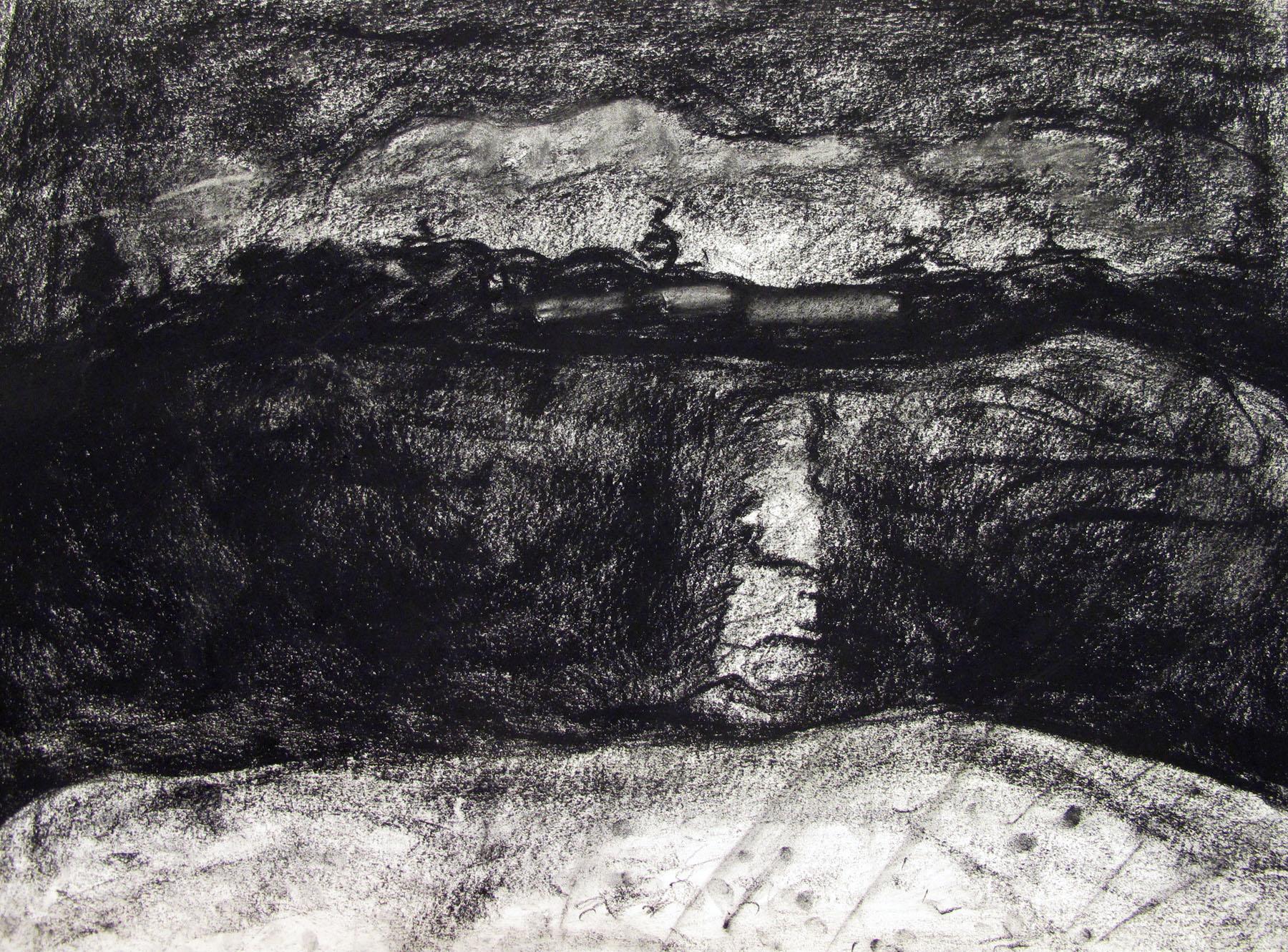 Anne H-nighttime landscape.JPG