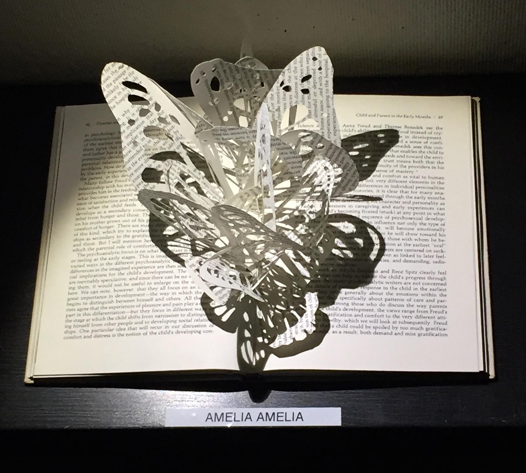 Amelia-butterflybook.jpg
