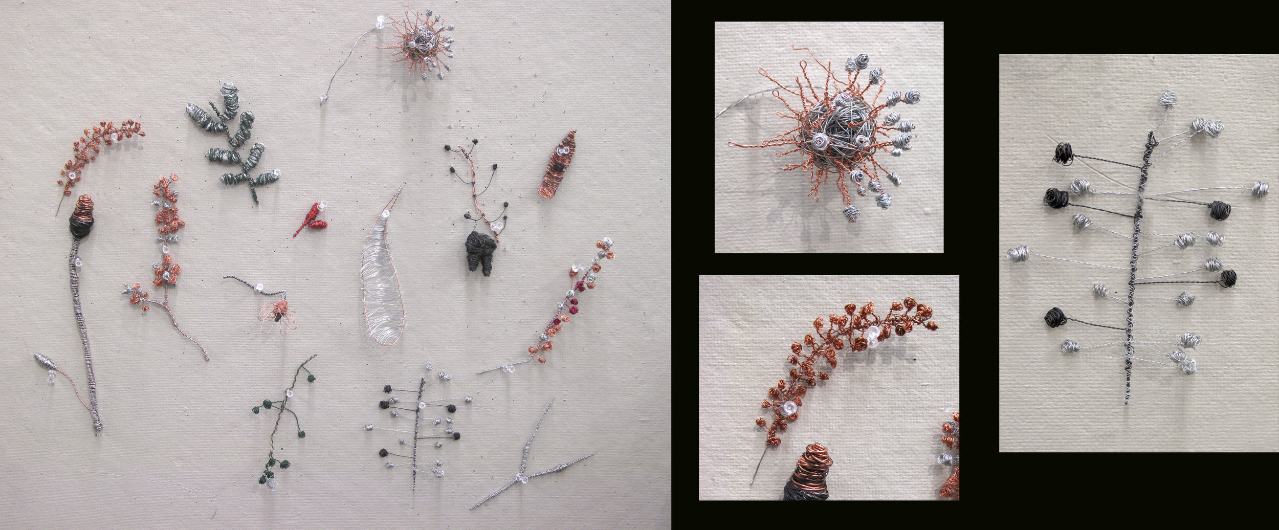Jessica C-wire nature forms.jpg