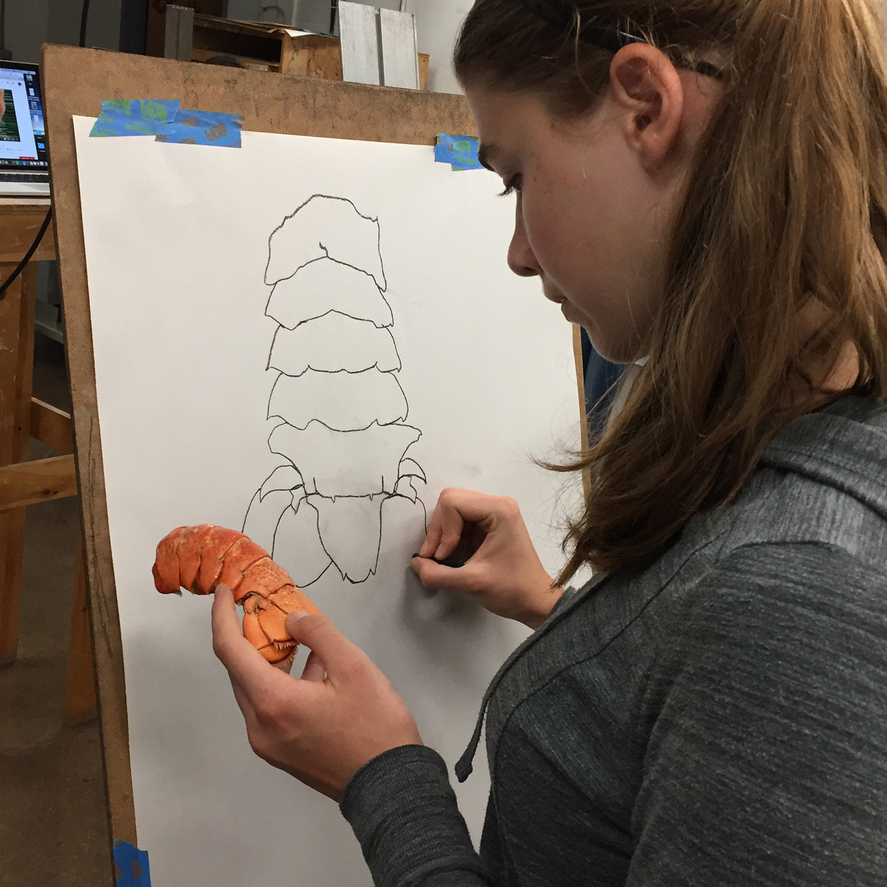 Tatum drawing lobster.jpg
