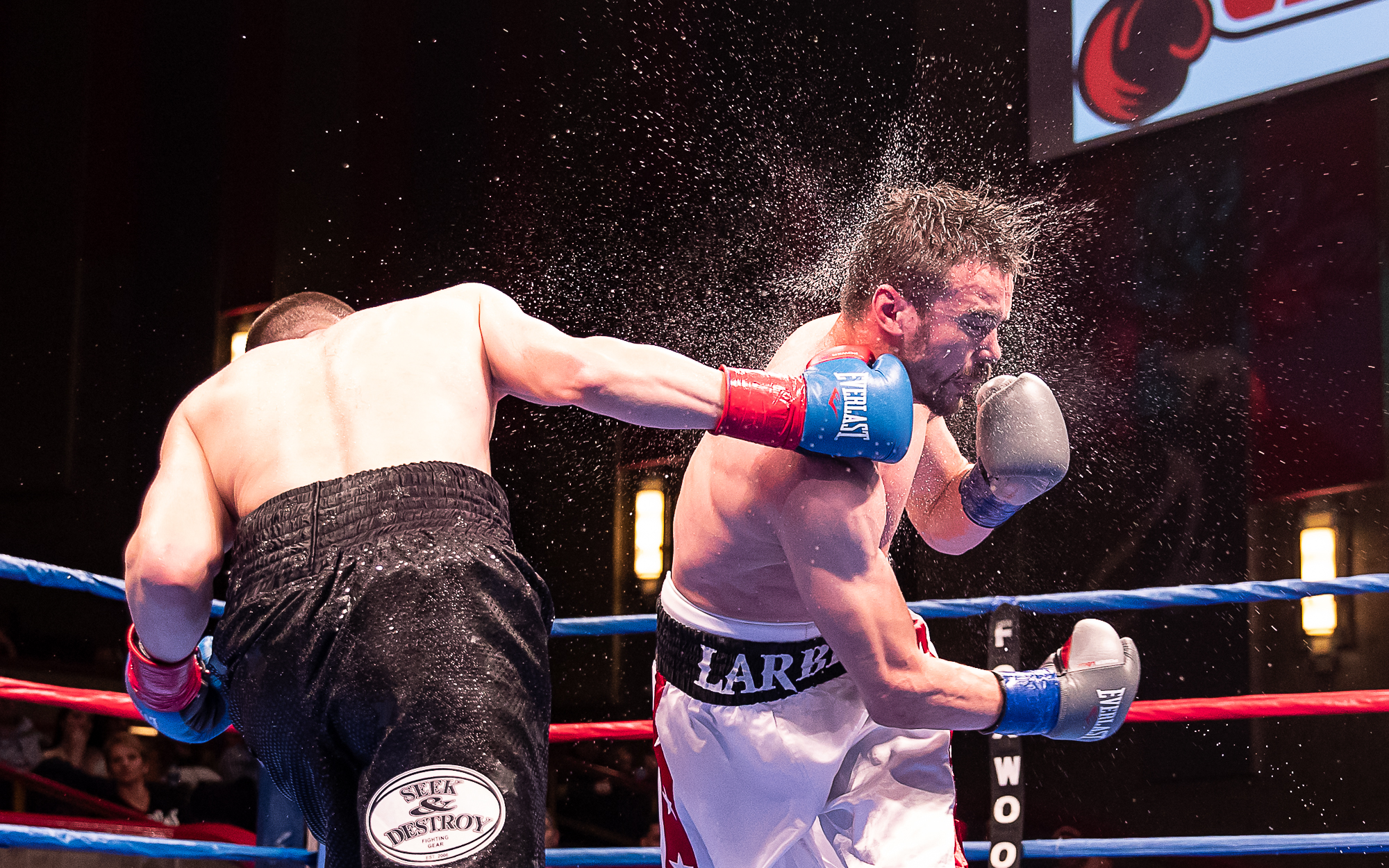 CES Professional Boxing