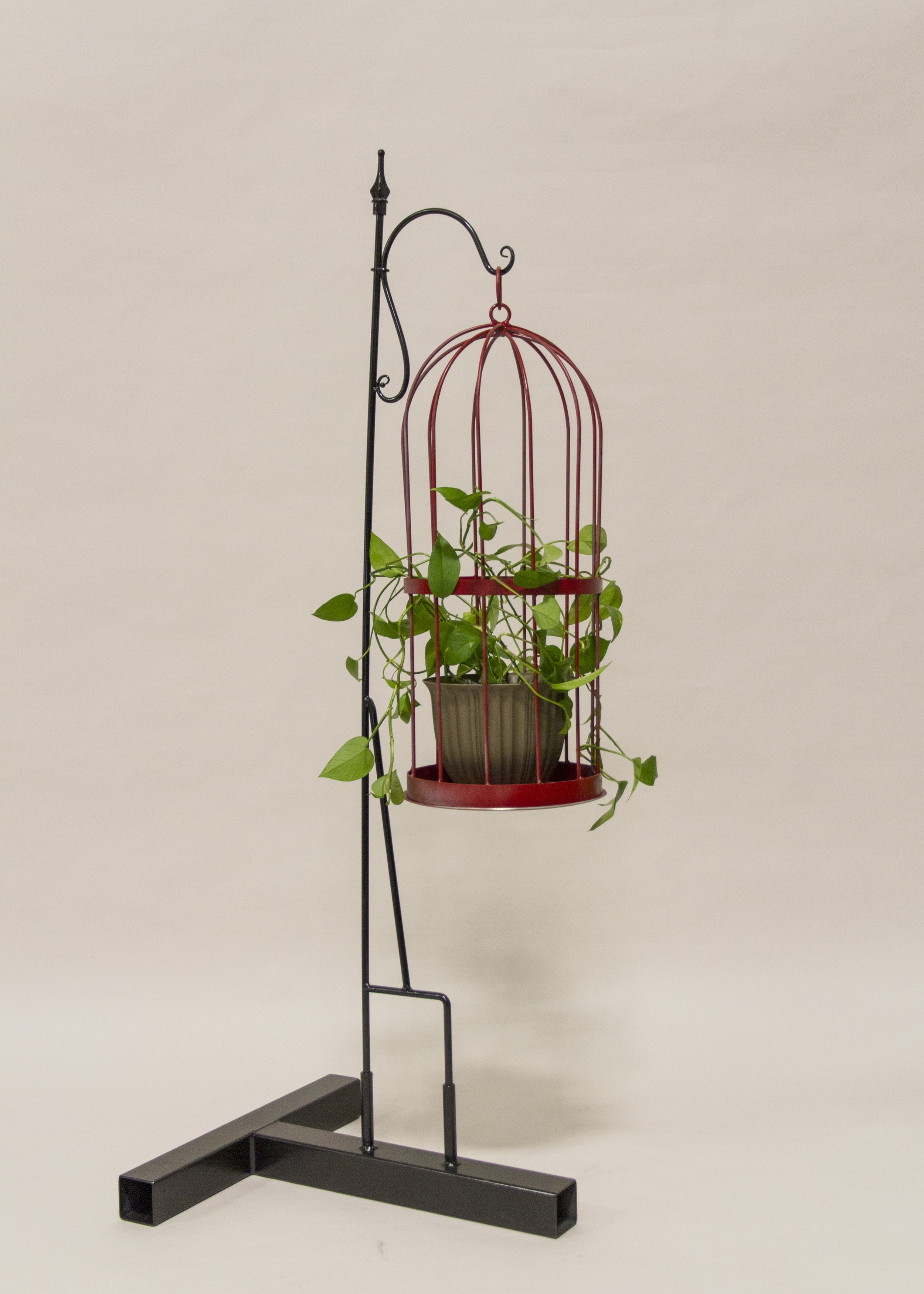 PlantCage.jpg