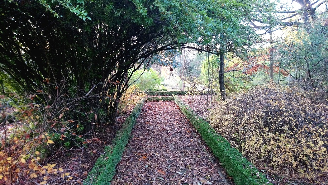 Path+to+the+Neglected+Garden+-+Suzanne+Winterly.jpg