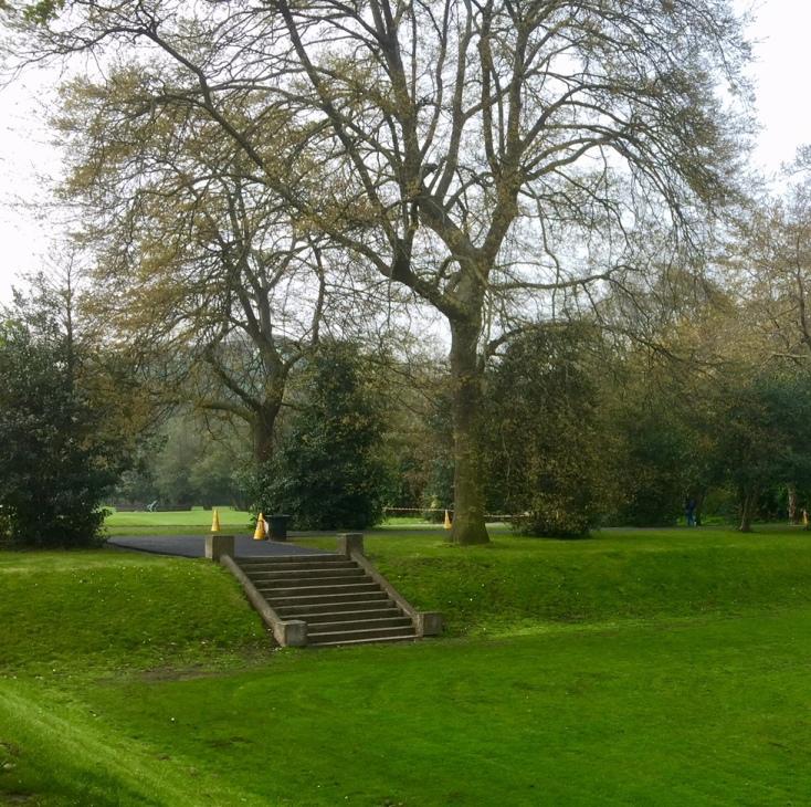 Iveagh Gardens - Lawn.jpg