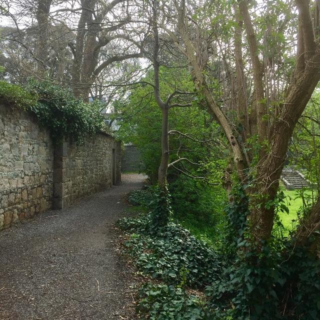 Iveagh Gardens - Path.jpg