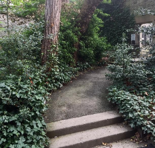 Iveagh Gardens - Steps to gate.jpg