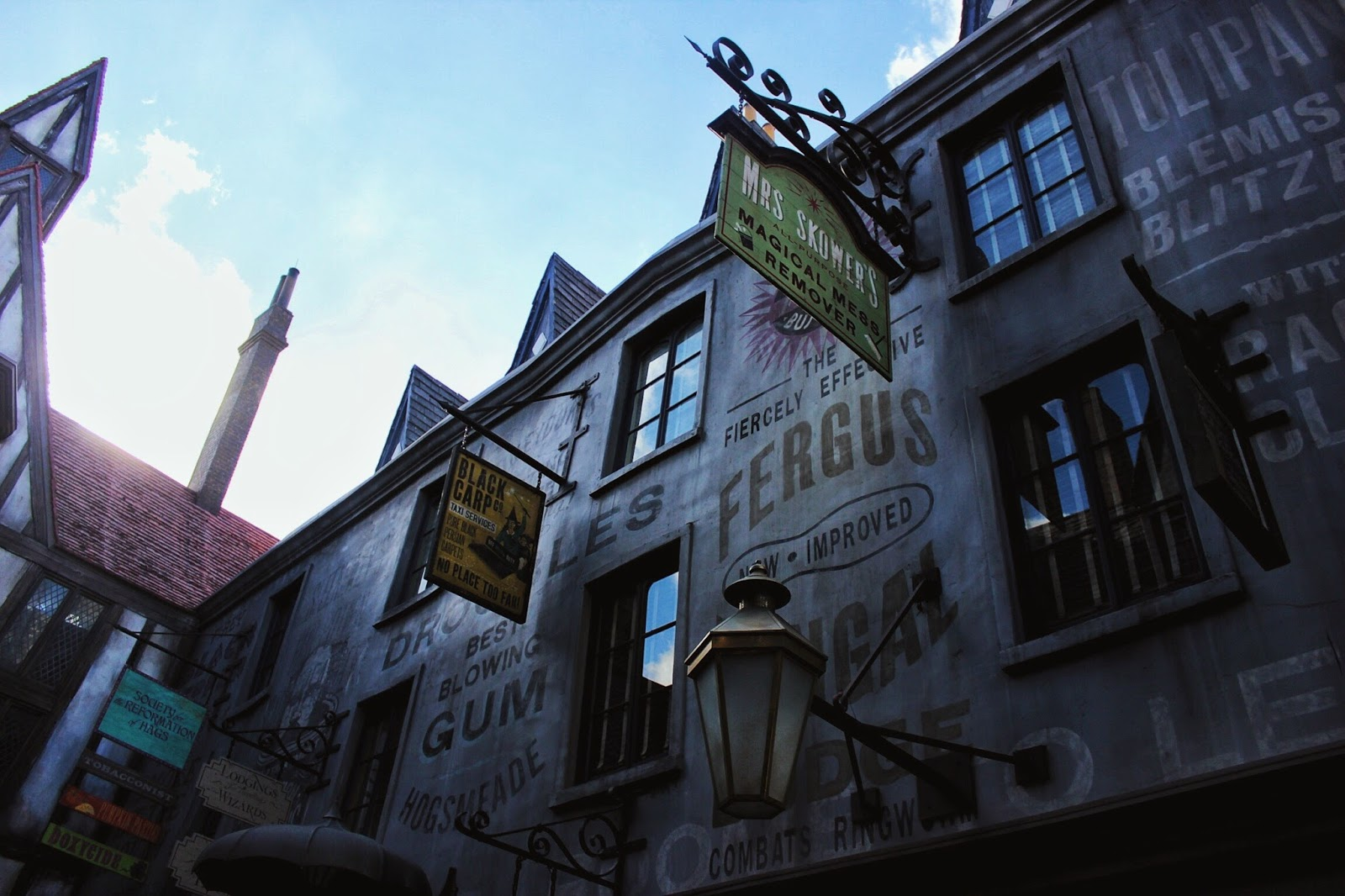 lifesthayle-harry-potter-beco-diagonal.JPG