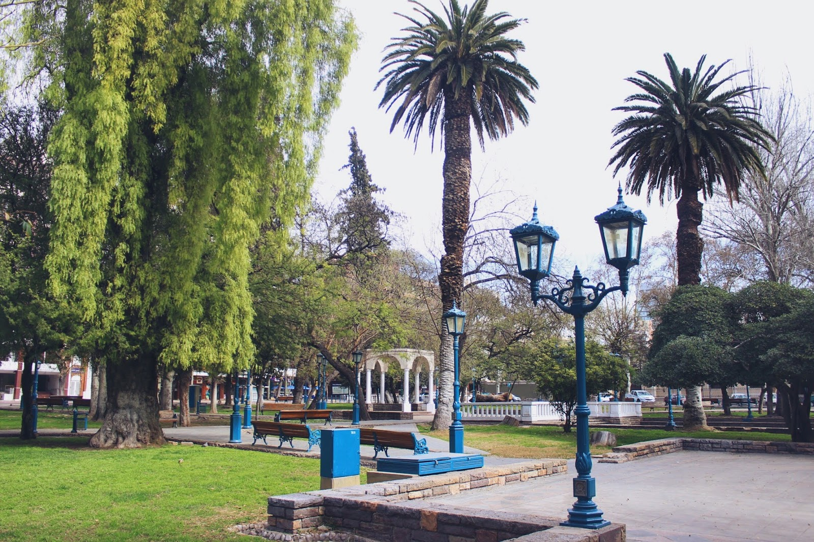 lifesthayle-mendoza-plaza-independencia-arbol.JPG