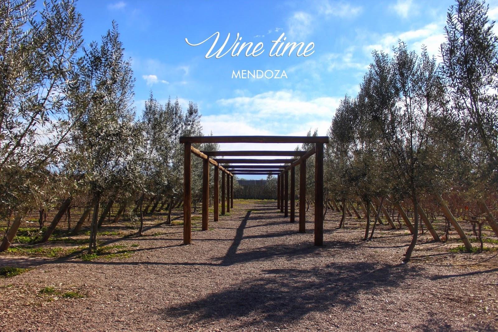 lifesthayle-wine-time-bodega-domiciano-parreiras.JPG