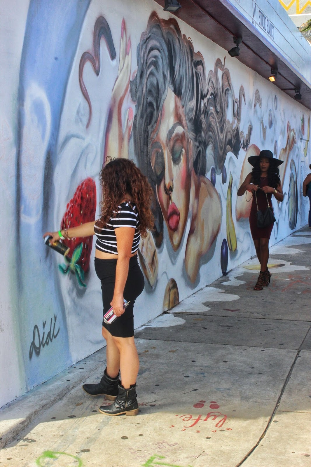 miami-wynwood-daiana-didi-graffiti.JPG