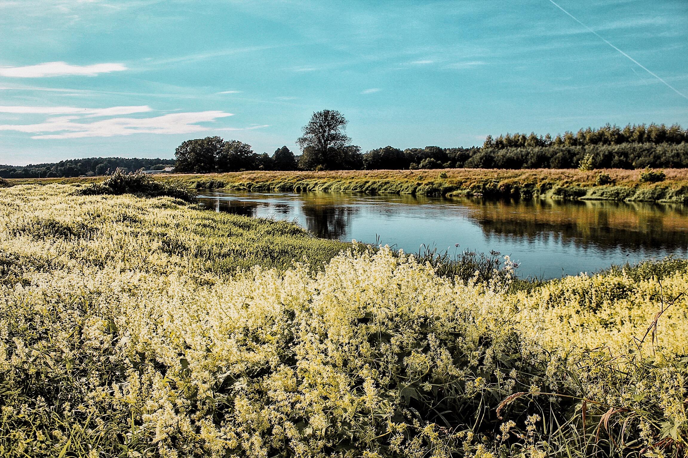 lifesthayle-wielkopolska-warta-river.JPG