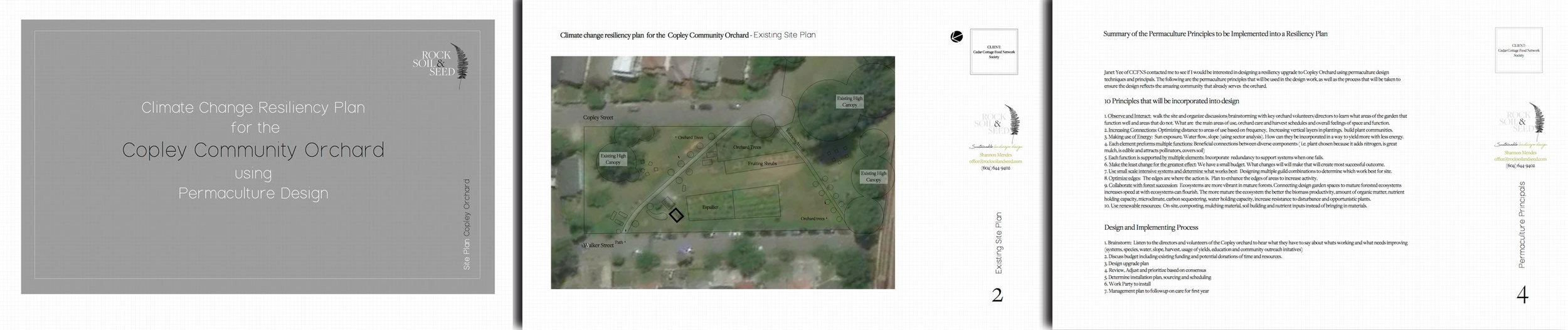 Copley-Orchard-web-1.jpg
