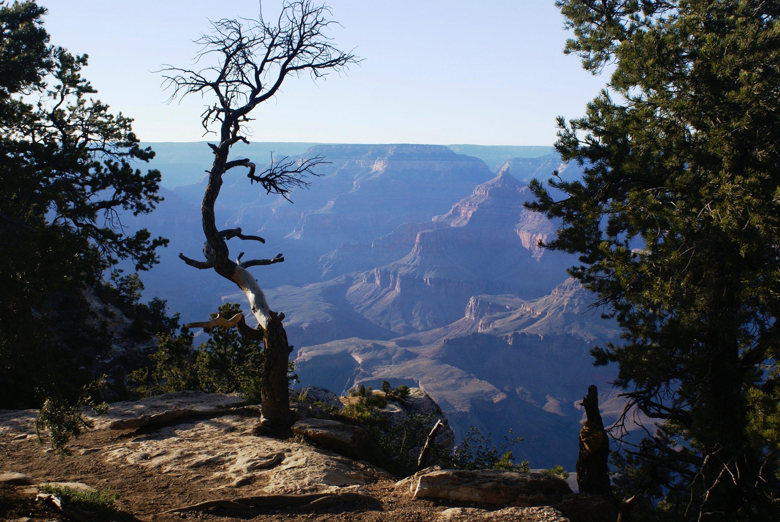 Scenery Grand Canyon (3).jpg