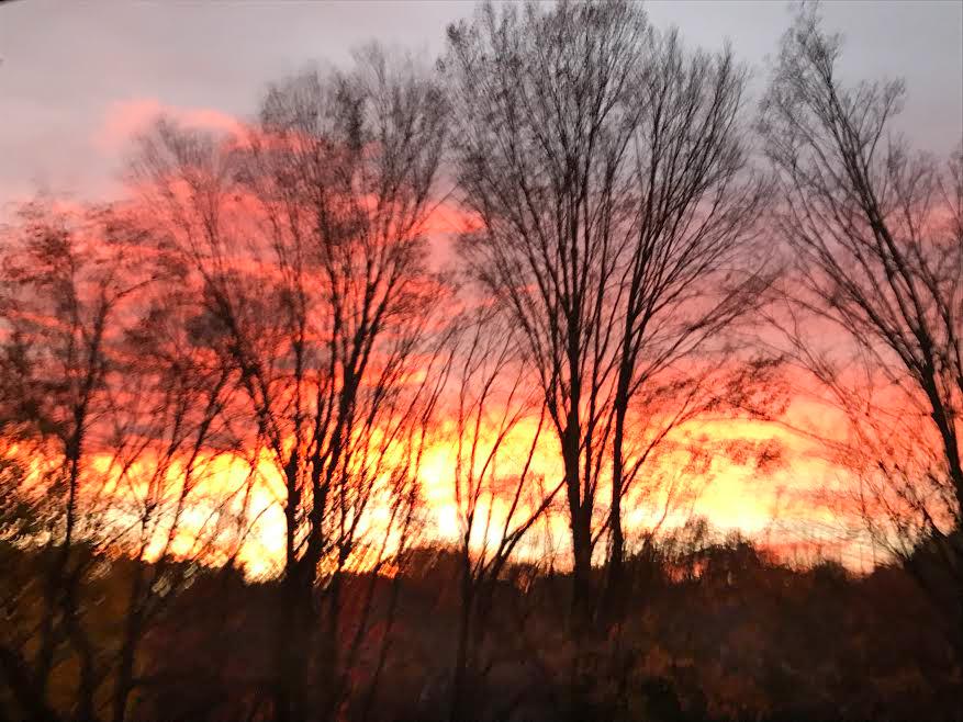 39 sunset .jpg